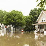 Alberta Floods