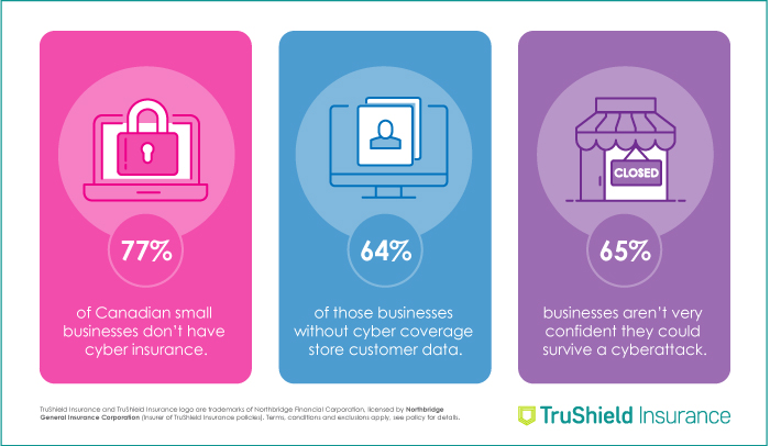 TruShield Infographic on facts about cyber coverage