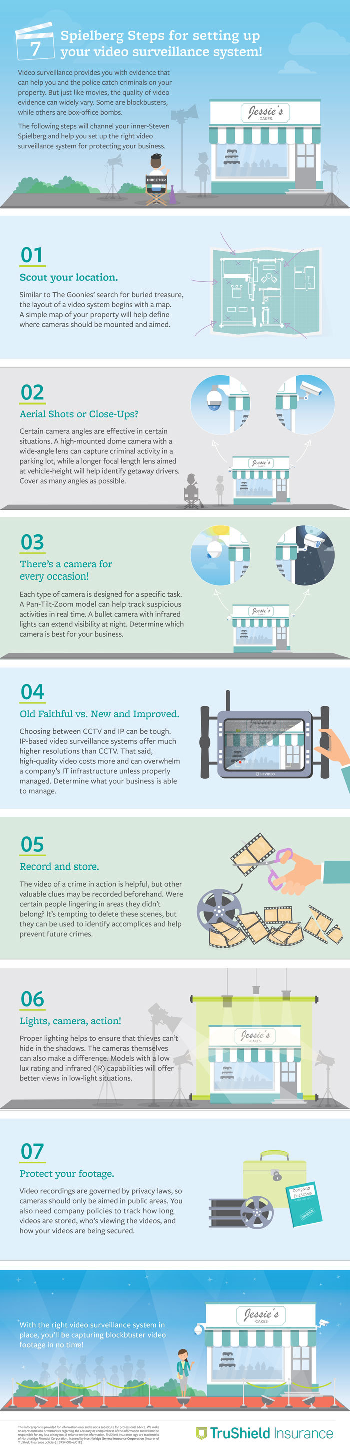 TruShield Video Surveillance System Infographic