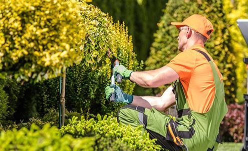 A worker tending to a garden.
